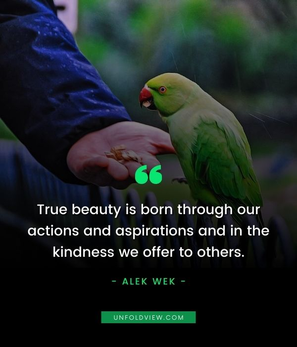 speak with kindness quotes Alek Wek